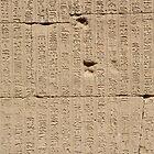 Egyptian Hieroglyphics  by dragoncity