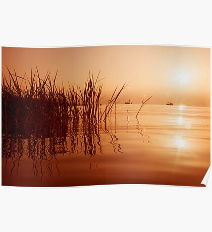 Morning in  the Sea of Galilee Poster