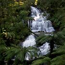 Triplet Falls, Otways, Victoria by Brendan J. Robertson