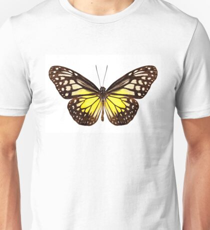 "Butterfly species Parantica aspasia common name ""Yellow Glassy Tiger"" Unisex T-Shirt"