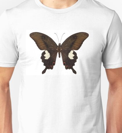 Black and brown butterfly species Papilio nephelus Unisex T-Shirt