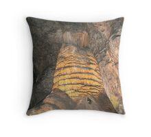 Carlsbad Caverns Throw Pillow