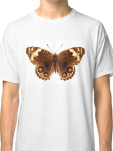 "Butterfly species Junonia orithya ""Eyed Pansy"" Classic T-Shirt"