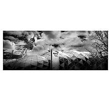 ' Stadium Victorious ' Photographic Print