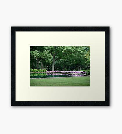 Reflections in solitude Framed Print