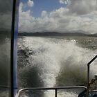 Waves woosh by Suzy1