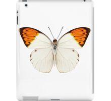 Butterfly species Graphium sarpedon iPad Case/Skin