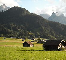 Summer in the Bavarian Alps by Erin Flynn