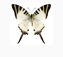 Butterfly species Graphium antiphates Unisex T-Shirt