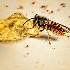 Nasty Wasp by Simon Duckworth