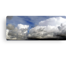 Sitting on a Cloud Watching the Action Canvas Print