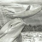 3 Dolphins by Drawing