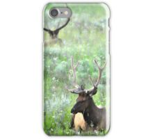 Back to Back They Faced Each Other iPhone Case/Skin