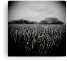green grass - loupe Canvas Print