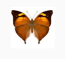 butterfly species Doleschallia bisaltide pratipa Unisex T-Shirt