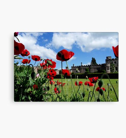 The Dancing Poppies Canvas Print