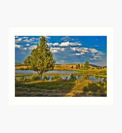 Evening at Blanchard Lake Art Print