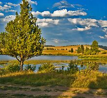 Evening at Blanchard Lake by Bryan D. Spellman