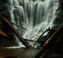 Kingstree Falls by DHParsons
