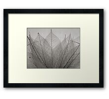 skeleton leaves Framed Print