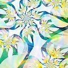 Luminaria by heavenriver
