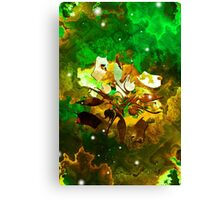 The Four Elements: Earth Canvas Print