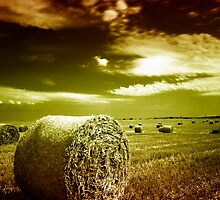 Welcome to Hay Ball by Ethem Kelleci