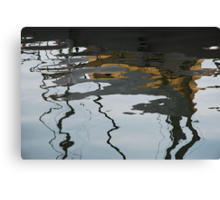 What on earth is this ? Canvas Print