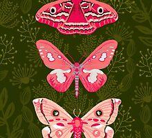 Lepidoptery No. 7 by Andrea Lauren  by Andrea Lauren