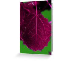 pink glod Greeting Card