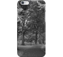 Central Park NYC Summer 2015 iPhone Case/Skin