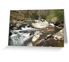 Virginia River Greeting Card