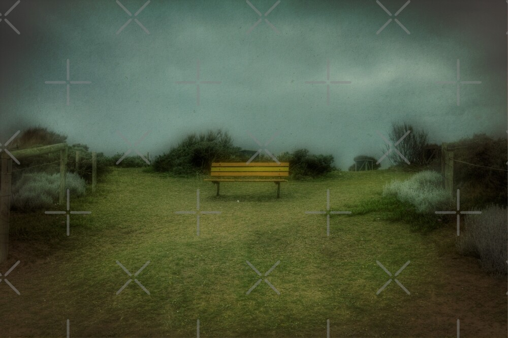 The Dreaming Bench by Elaine Teague