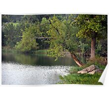 Lakefront view Poster
