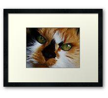 Lovely Lucy Long Framed Print