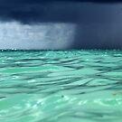 Stormy Ocean view  by Earl McCall