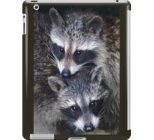 Adorable Baby Racoons iPad Case/Skin