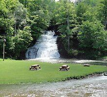 Holley Falls by Elizabeth Leib