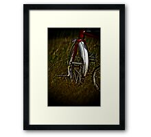 Forgotten joy Framed Print
