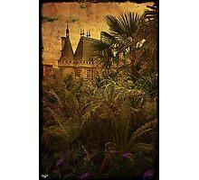 Jungle Chateau Photographic Print