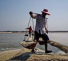 Salt Carting by Dave Lloyd