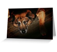 The Face on the Barroom Floor Greeting Card
