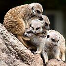 Group hug! by Katrina Freckleton