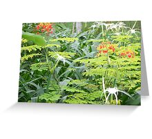 Beautiful Delicate Flowers of Canton Greeting Card