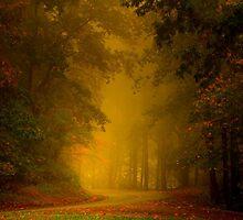 Mist of Autumn by dlennis