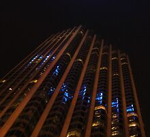 Chase Tower Chicago by Paula Bielnicka