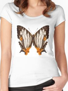 Butterfly species Cyrestis lutea martini Women's Fitted Scoop T-Shirt
