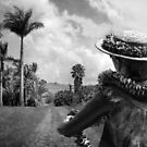 Aloha by Ellen Cotton