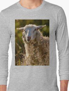 Funny Sheep Long Sleeve T-Shirt