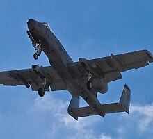 An A-10 Thunderbolt's belly by Henry Plumley